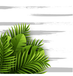 Exotic jungle tropical palm leaves summer floral vector