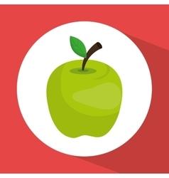 green apple fruit vector image