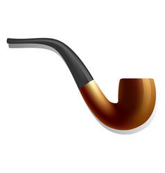 smoking pipe icon realistic style vector image
