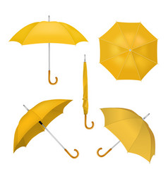 Yellow umbrellas realistic vector