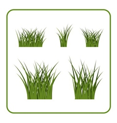 Green grass bushes isolated set vector