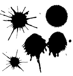 Black ink paint spots drops texture isolated on vector