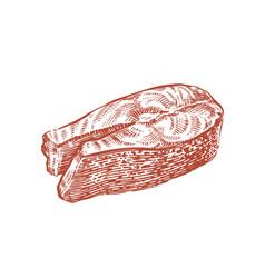 cut piece salmon fish sketch food concept vector image