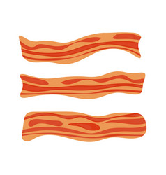 fried bacon stripe pork meat healthy tasty vector image