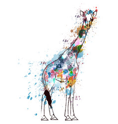 Giraffe covered with colorful grunge splashes vector