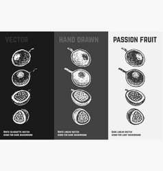 Hand drawn passion fruit set sketches vector