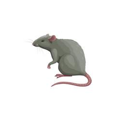 Rat icon pest control extermination deratization vector