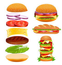set fast food burger ingredients tomato slices vector image