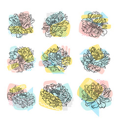 set of hand drawn flowers with colorful vector image