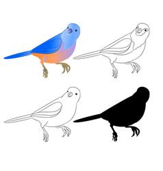 Small bird thrush bluebird outline nature vector
