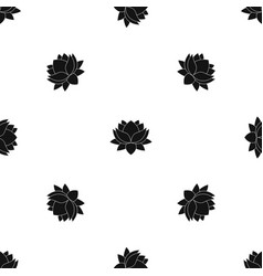 water lily flower pattern seamless black vector image
