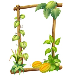 A wooden frame with plants vector image