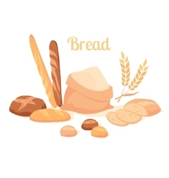 Bread isolated on white background vector image vector image