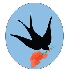 black swallow bird on white background vector image