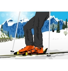 close up of ski low angle vector image