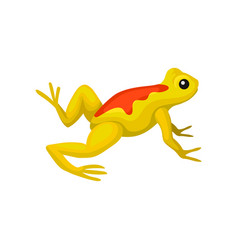 Flat icon of bright yellow frog with orange vector