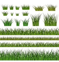 Green grass seamless pattern and bushes nature vector