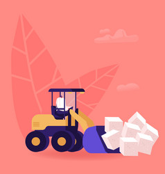 man loading huge cubes white sugar with vector image