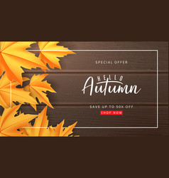 seasonal banner for autumn sale vector image