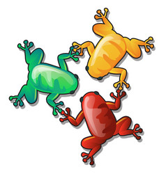 Three funny colorful frogs or toads hold each vector