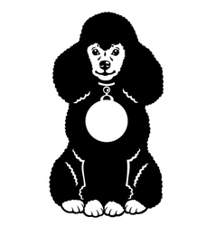 black poodle vector image vector image