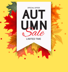 abstract autumn sale background with falling vector image