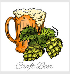 beer mug and hops on a white background vector image