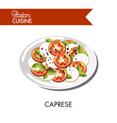 Caprese italian cuisine mozzarella cheese and vector