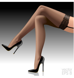Crossed beautiful womans legs in dark stockings vector