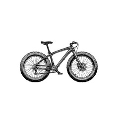 Fat bike vector