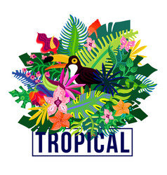 tropical exotic plants colorful composition vector image