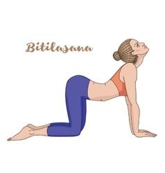 Women silhouette Cow yoga pose Bitilasana vector