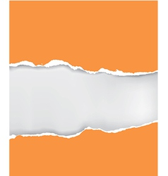 Orange ripped paper vector image vector image