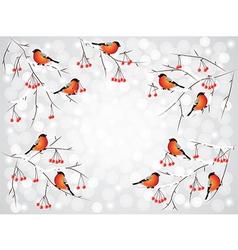 bullfinch winter background vector image