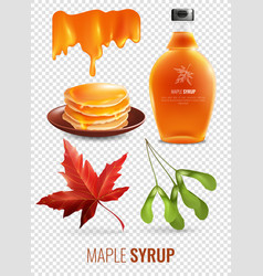 Vermont maple syrup set vector