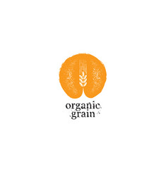 agriculture organic grain rough vector image