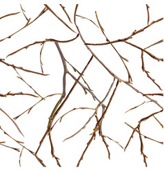 Bare branches without leaves late autumn seamless vector