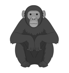 chimpanzee icon monochrome vector image