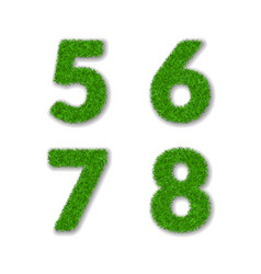 grass numbers 5 6 7 8 green 3d numbers five six vector image