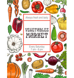 poster with various vegetables vector image