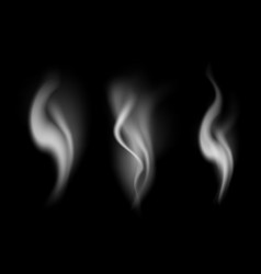 realistic detailed 3d images smoke set vector image