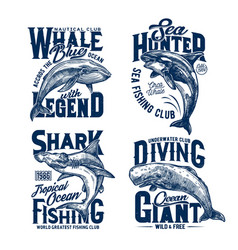 Tshirt prints with shark killer and blue whales vector