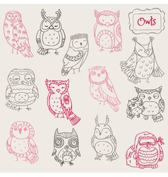 Various owl doodle collection vector