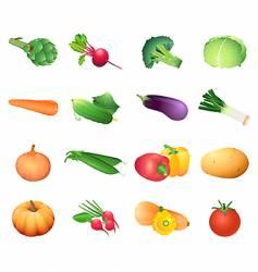calorie table vegetables vector image