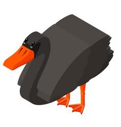 3d design for black swan vector image