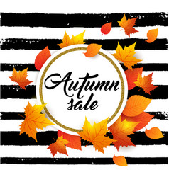 banner for seasonal fall sale vector image