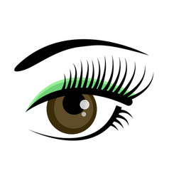beautiful brown female eye with eyelashes vector image