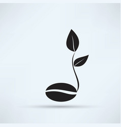 coffee seedlings vector image