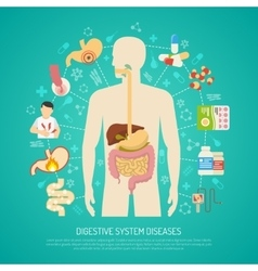 Digestive System Diseases vector