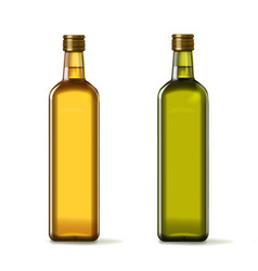 olive and sunflower oil bottles realistic set vector image